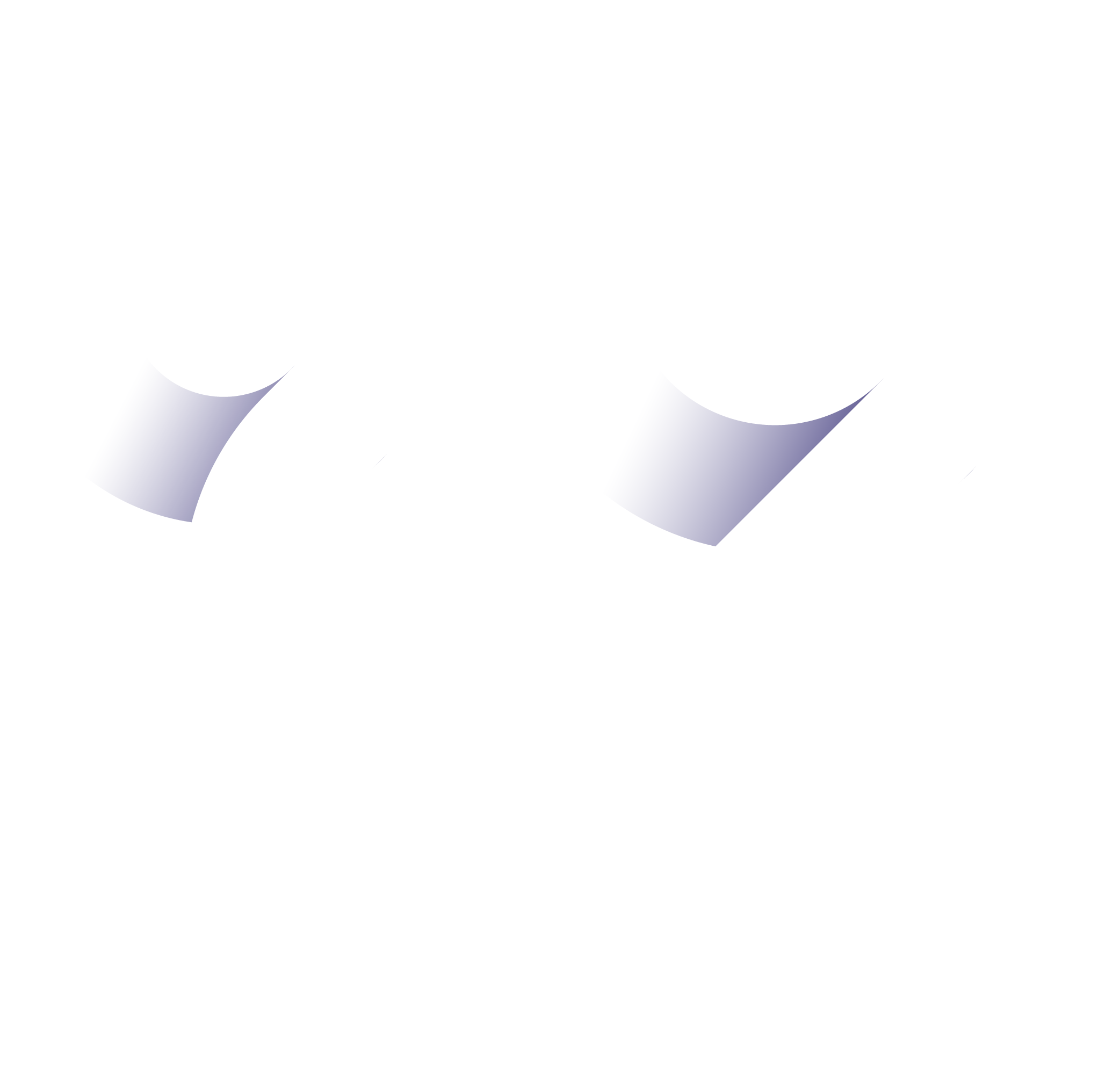 Blue Wire Media logo